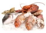 Fisch & Meeresfr�chte